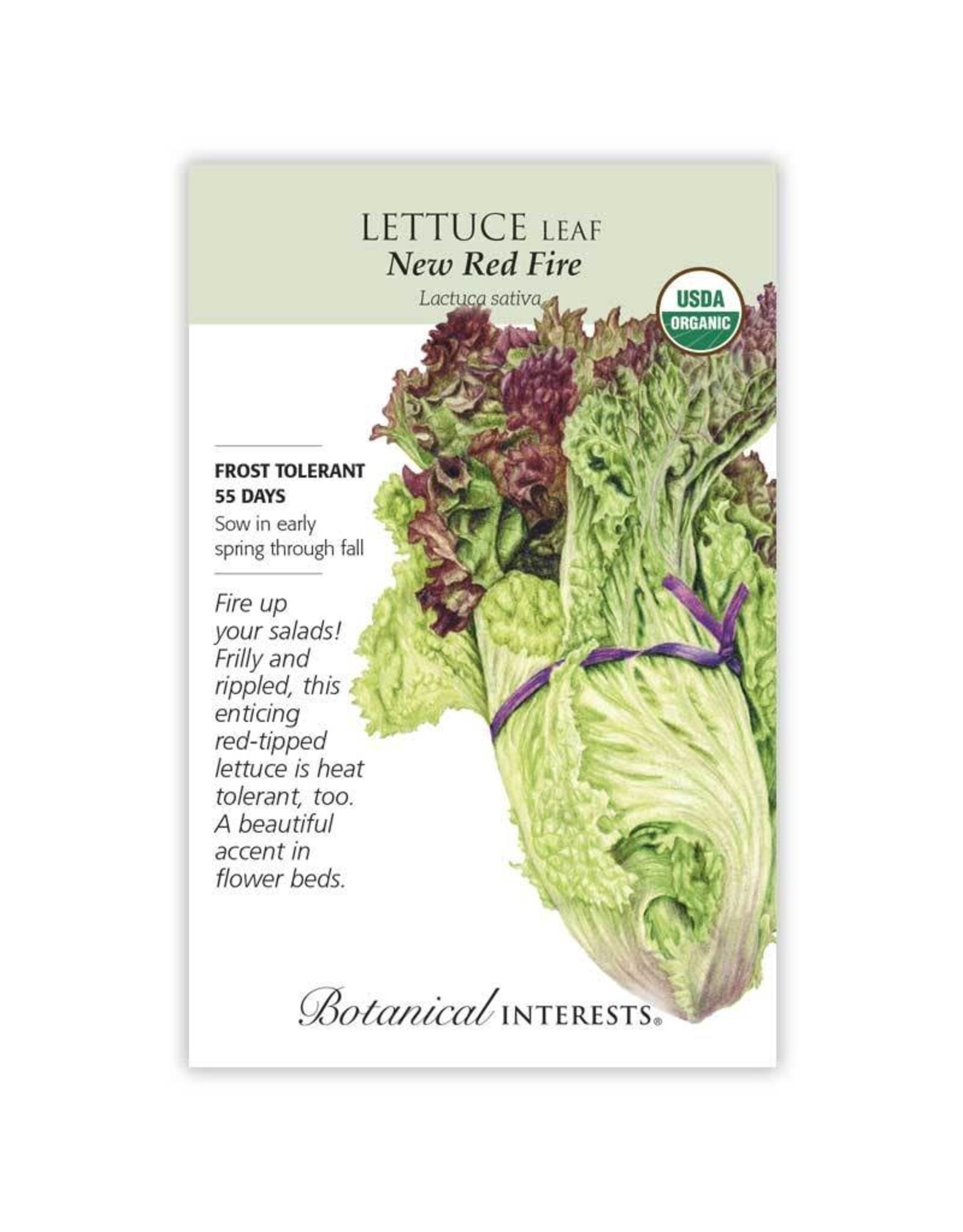 Seeds - Lettuce Leaf New Red Fire Organic