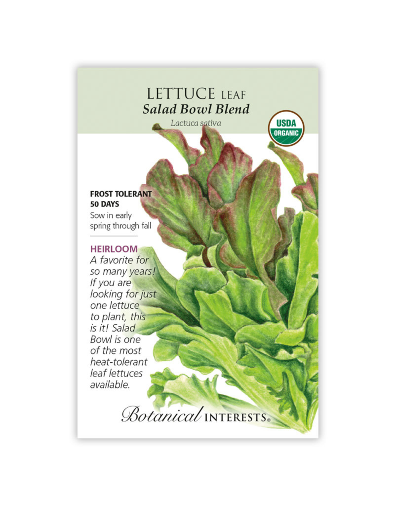 Seeds - Lettuce Leaf Salad Bowl Blend Organic, Large