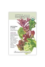 Seeds - Lettuce Mesclun Gourmet Baby Organic, Large