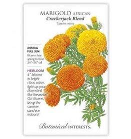 Seeds - Marigold African Crackerjack