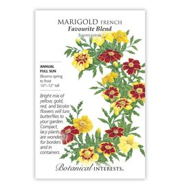 Seeds - Marigold French Favourite Blend