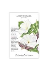 Seeds - Moonflower