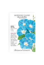 Seeds - Morning Glory Heavenly Blue