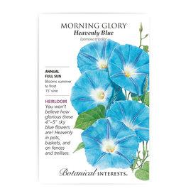 Seeds - Morning Glory Heavenly Blue