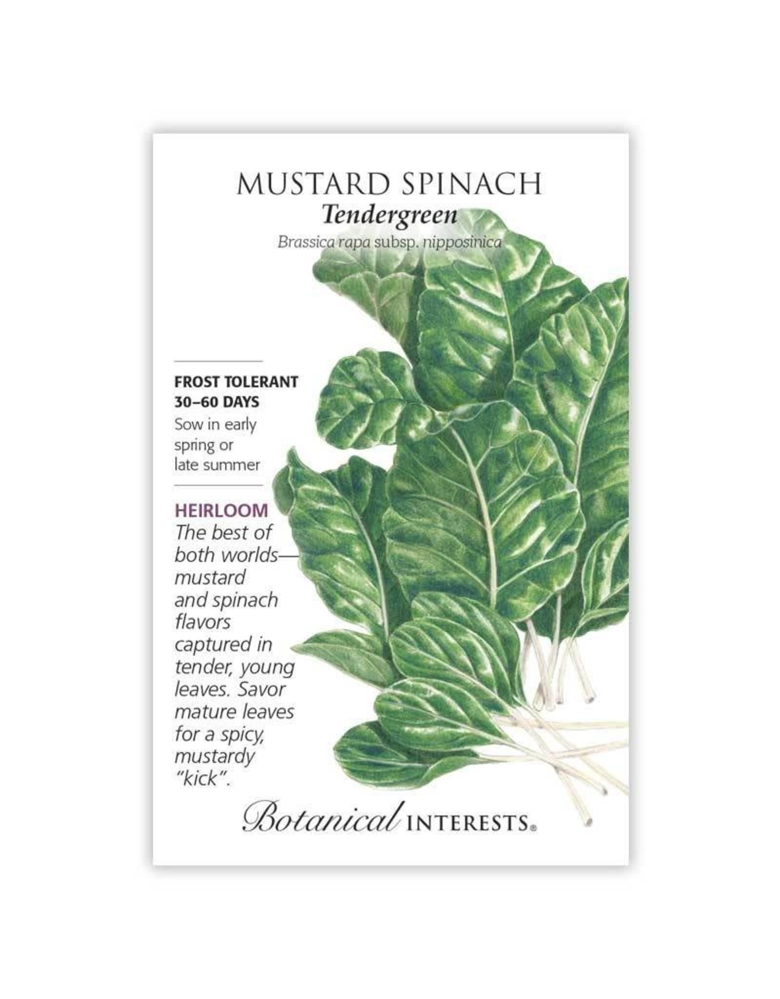 Seeds - Mustard Spinach Tendergreen