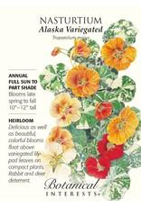 Seeds - Nasturtium Alaska Variegated
