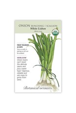 Seeds - Onion Bunching, Scallion, White Lisbon, Organic