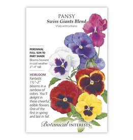Seeds - Pansy Swiss Giant Blend