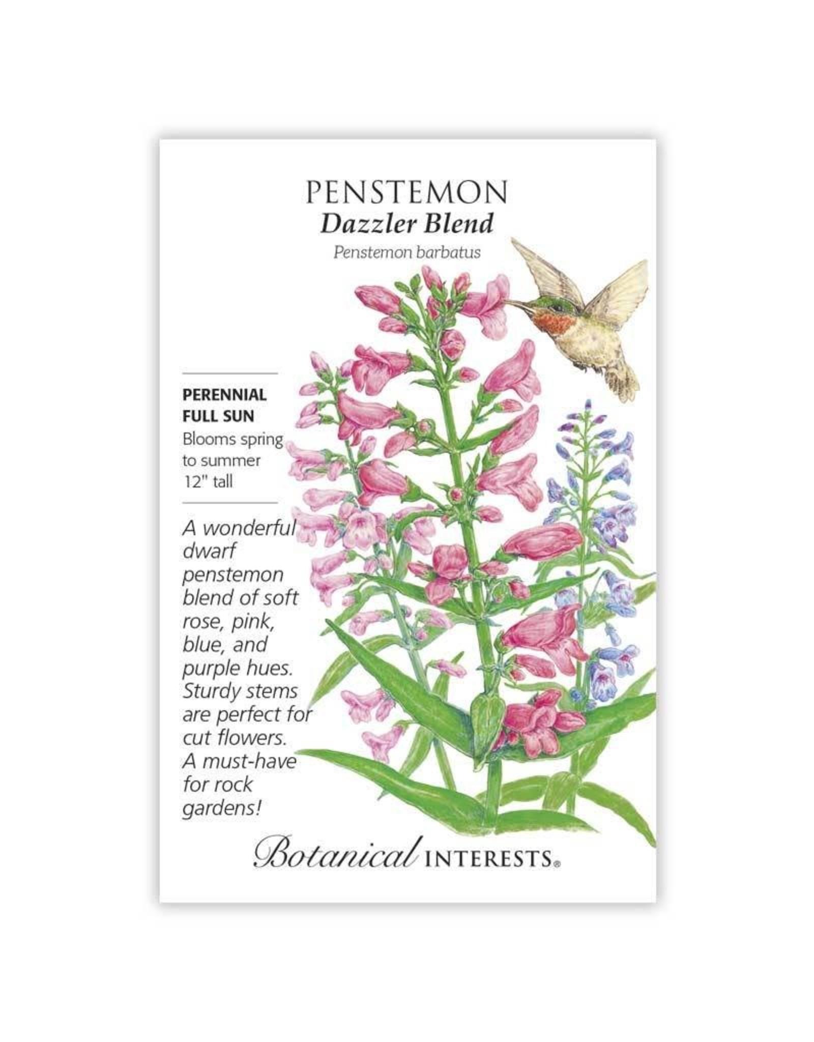 Seeds - Penstemon Dazzler Blend