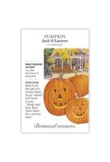 Seeds - Pumpkin Jack O'Lantern