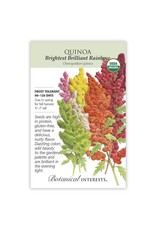 Seeds - Quinoa Brightest Rainbow Organic