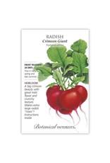 Seeds - Radish Crimson Giant
