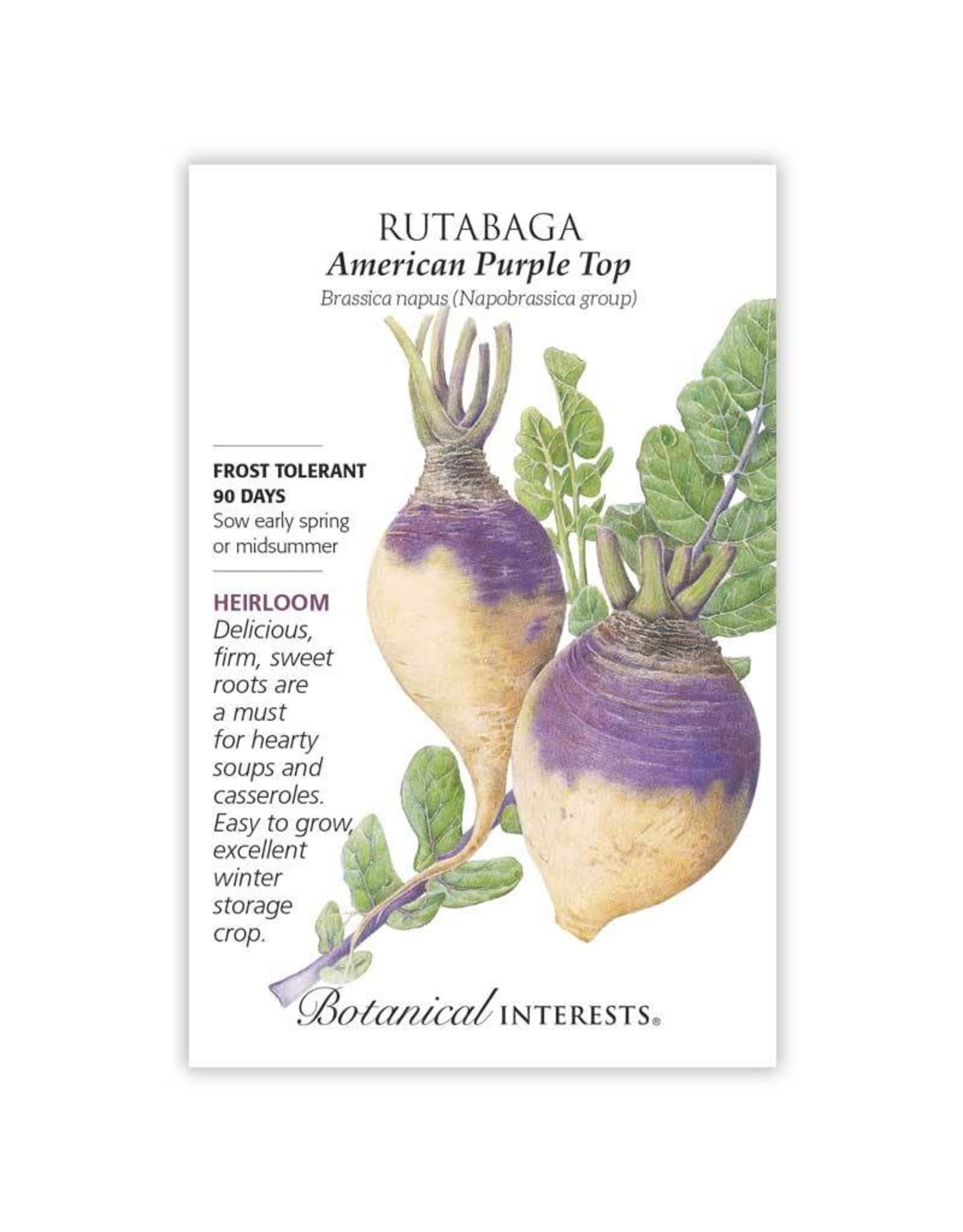 Seeds - Rutabaga American Purple Top