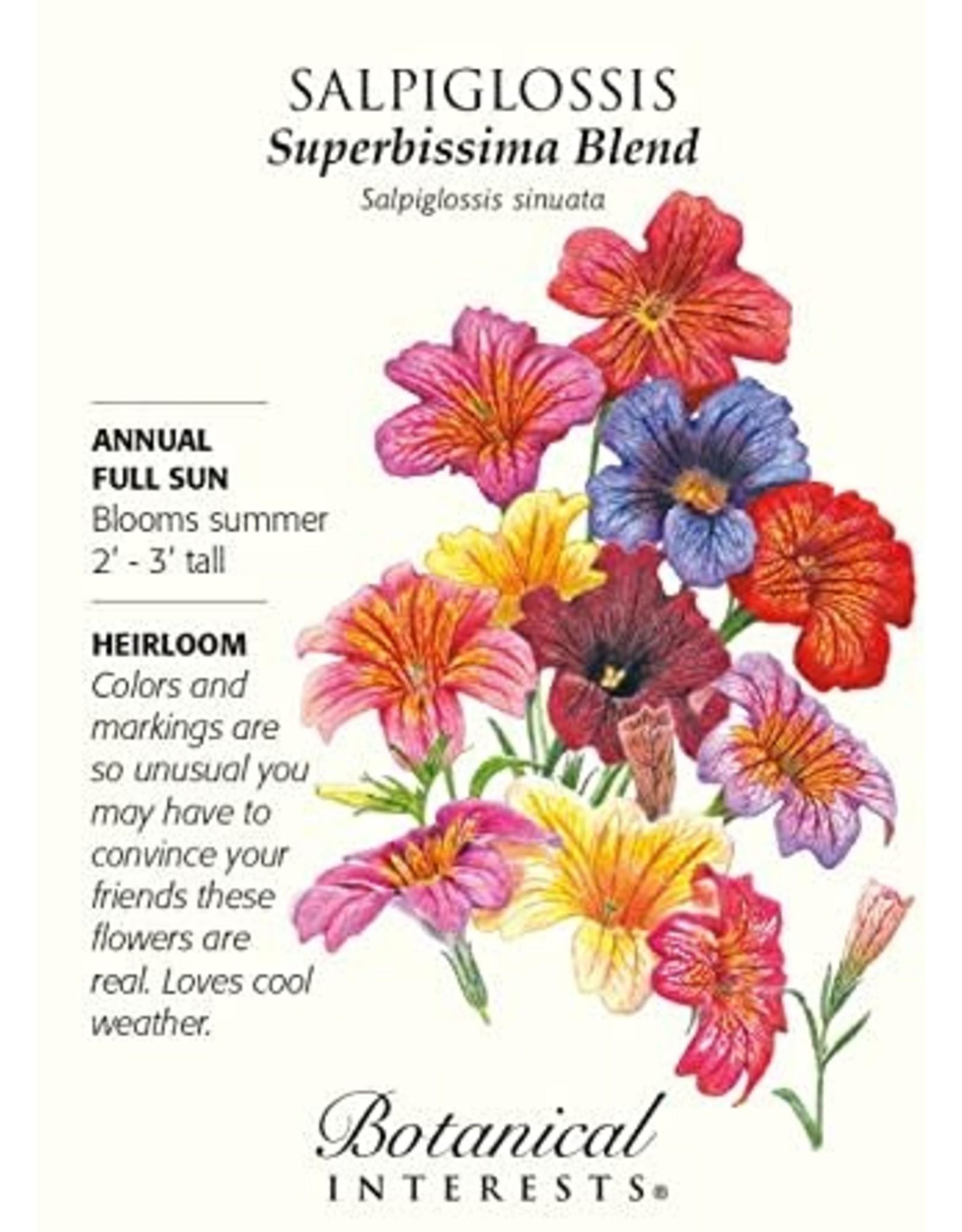 Seeds - Salpiglossis Superbissima Blend