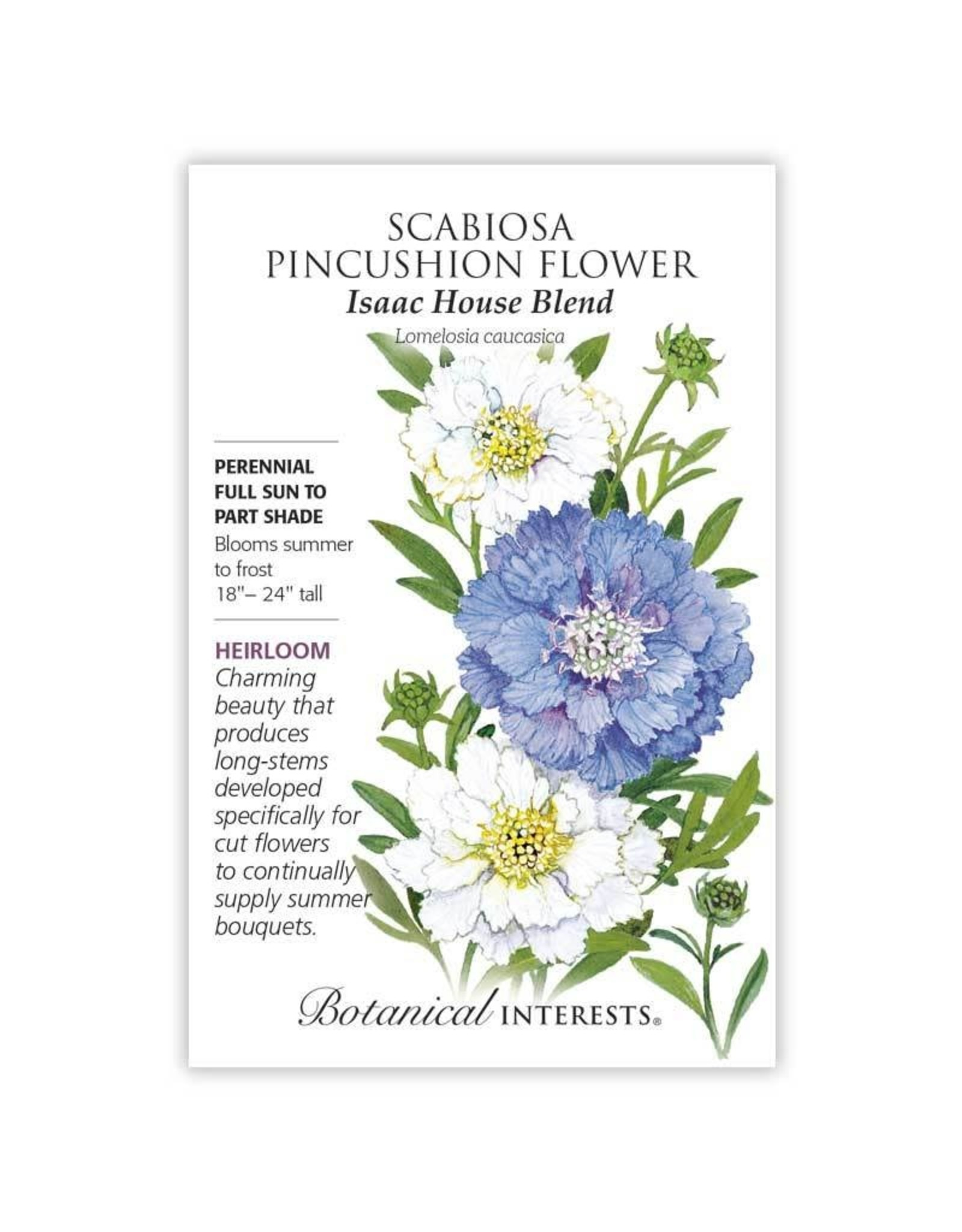 Seeds - Scabiosa, Pincushion Flower, Isaac House Blend