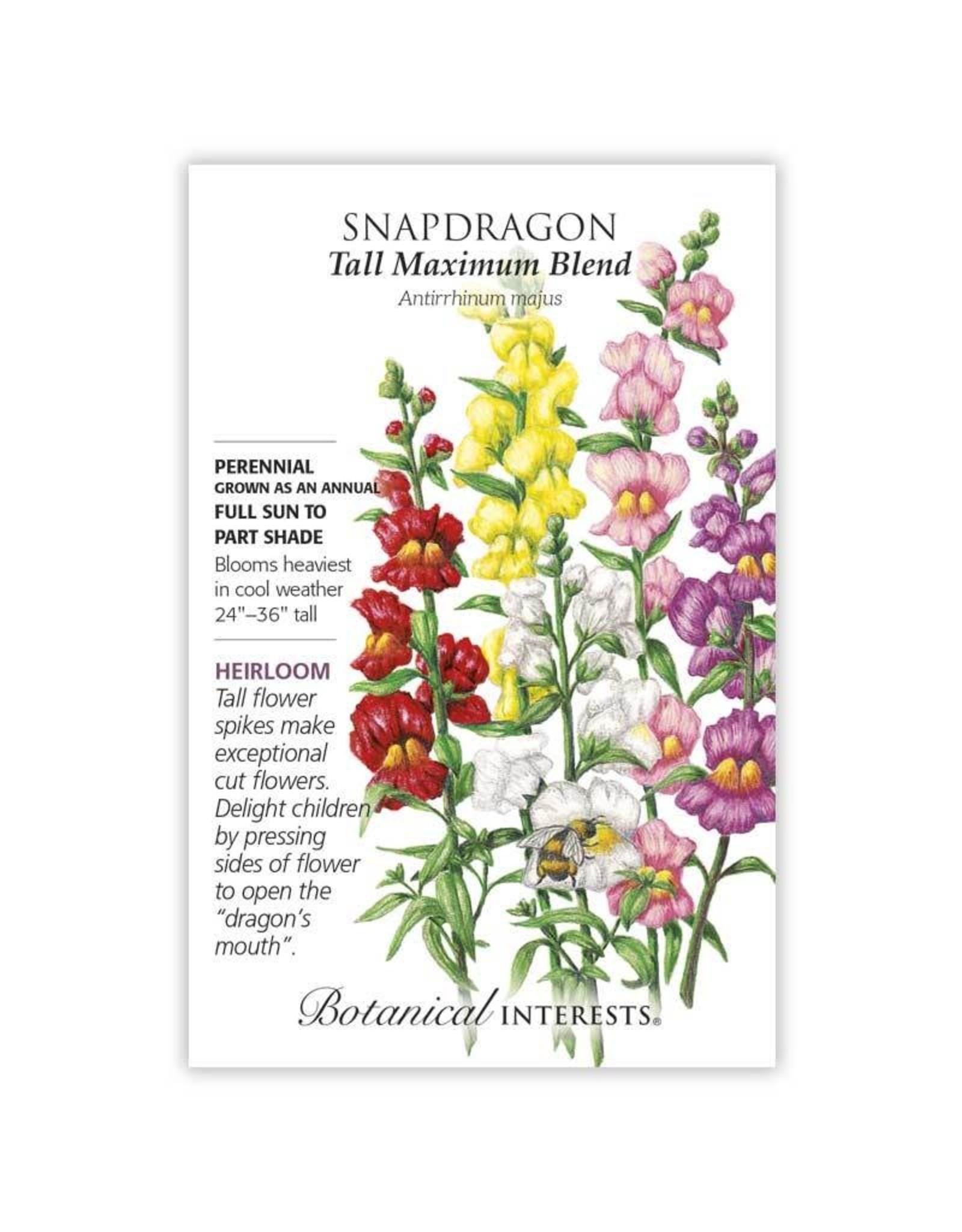 Seeds - Snapdragon Tall Maximum Blend