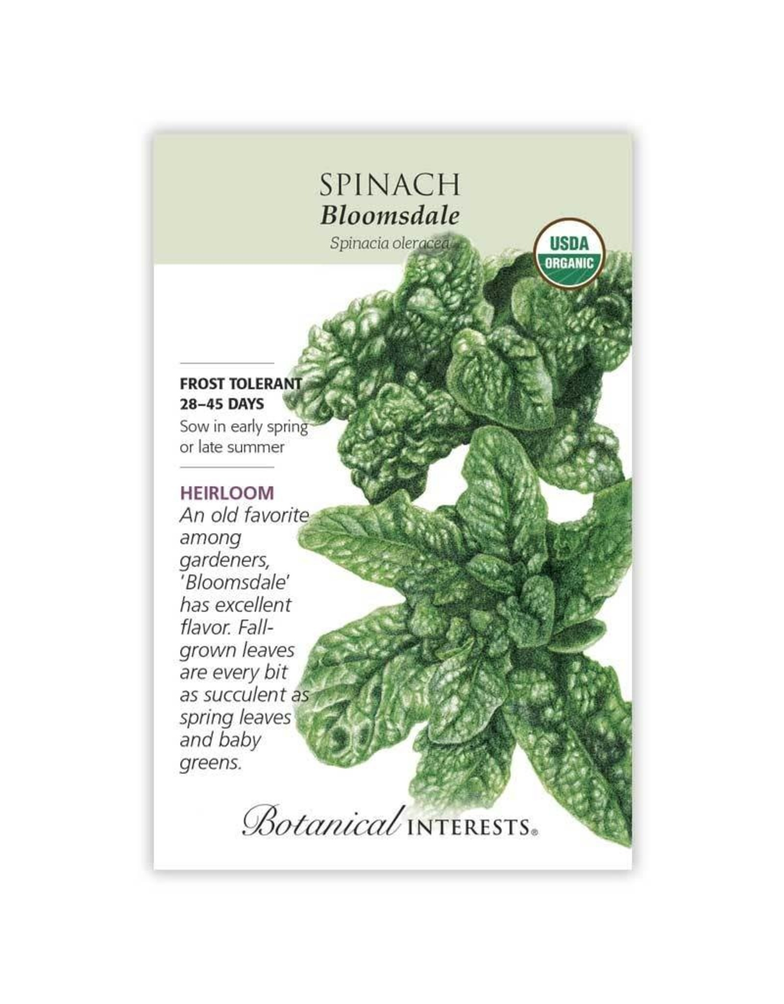 Seeds - Spinach Bloomsdale Organic, Large