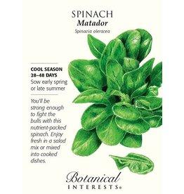 Seeds - Spinach Matador