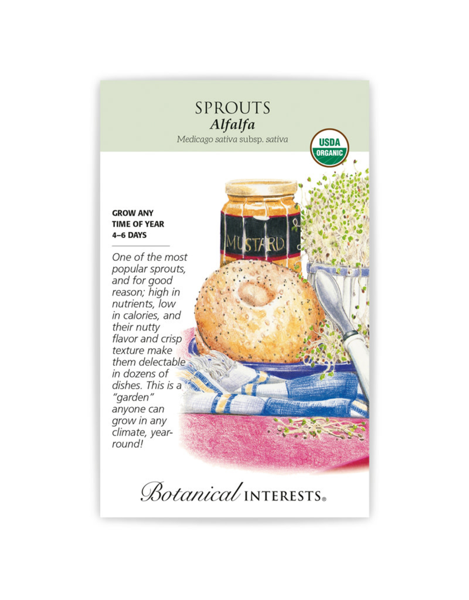Seeds - Sprouts Alfalfa Organic