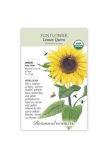 Seeds - Sunflower Lemon Queen Organic