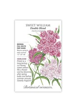 Seeds - Sweet William Double Blend