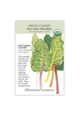 Seeds - Swiss Chard Five Color Organic