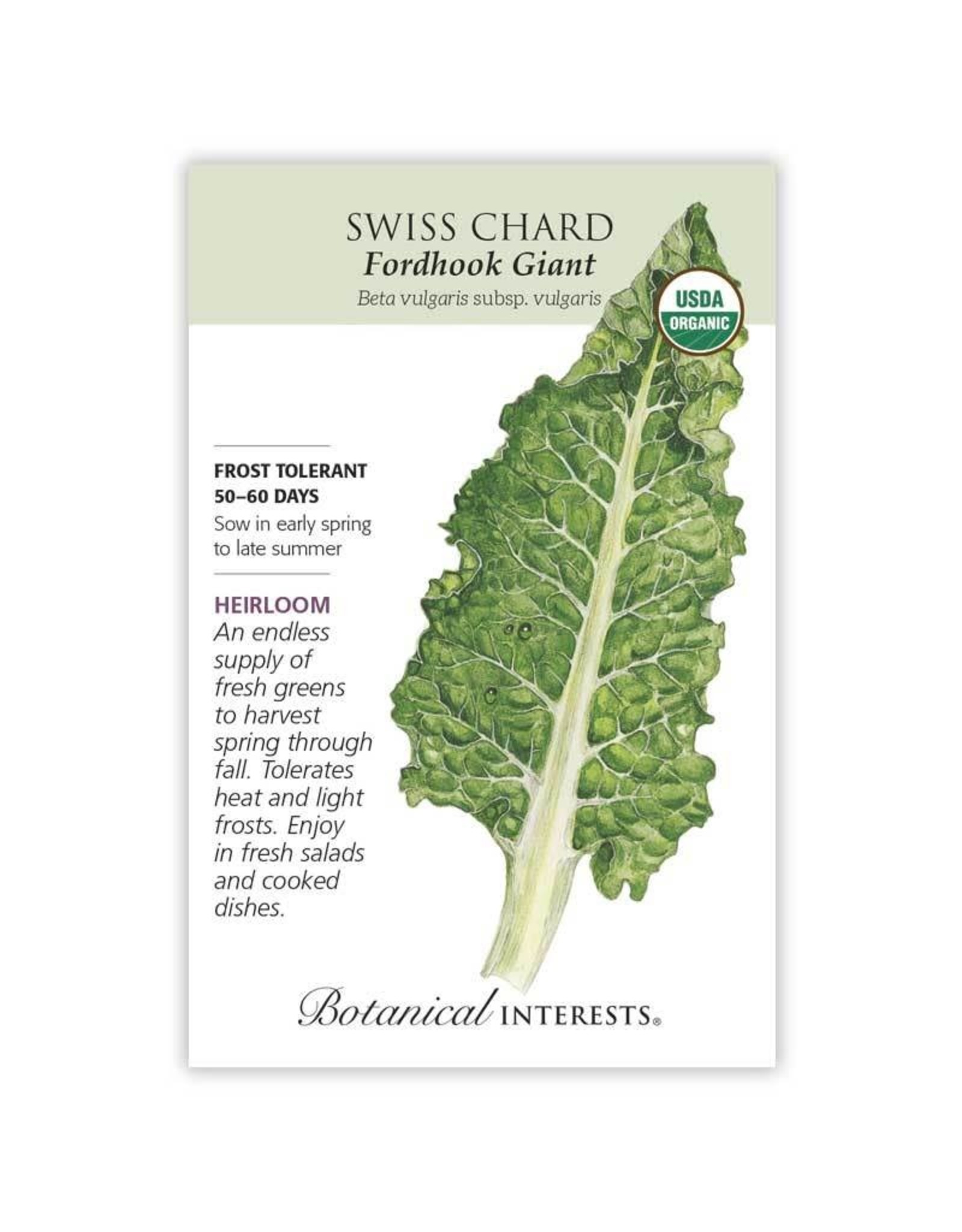Seeds - Swiss Chard Fordhook Giant Organic