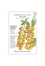 Seeds - Tomato Cherry Sun Gold Hybrid