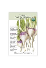 Seeds - Turnip Purple Top White Globe Organic