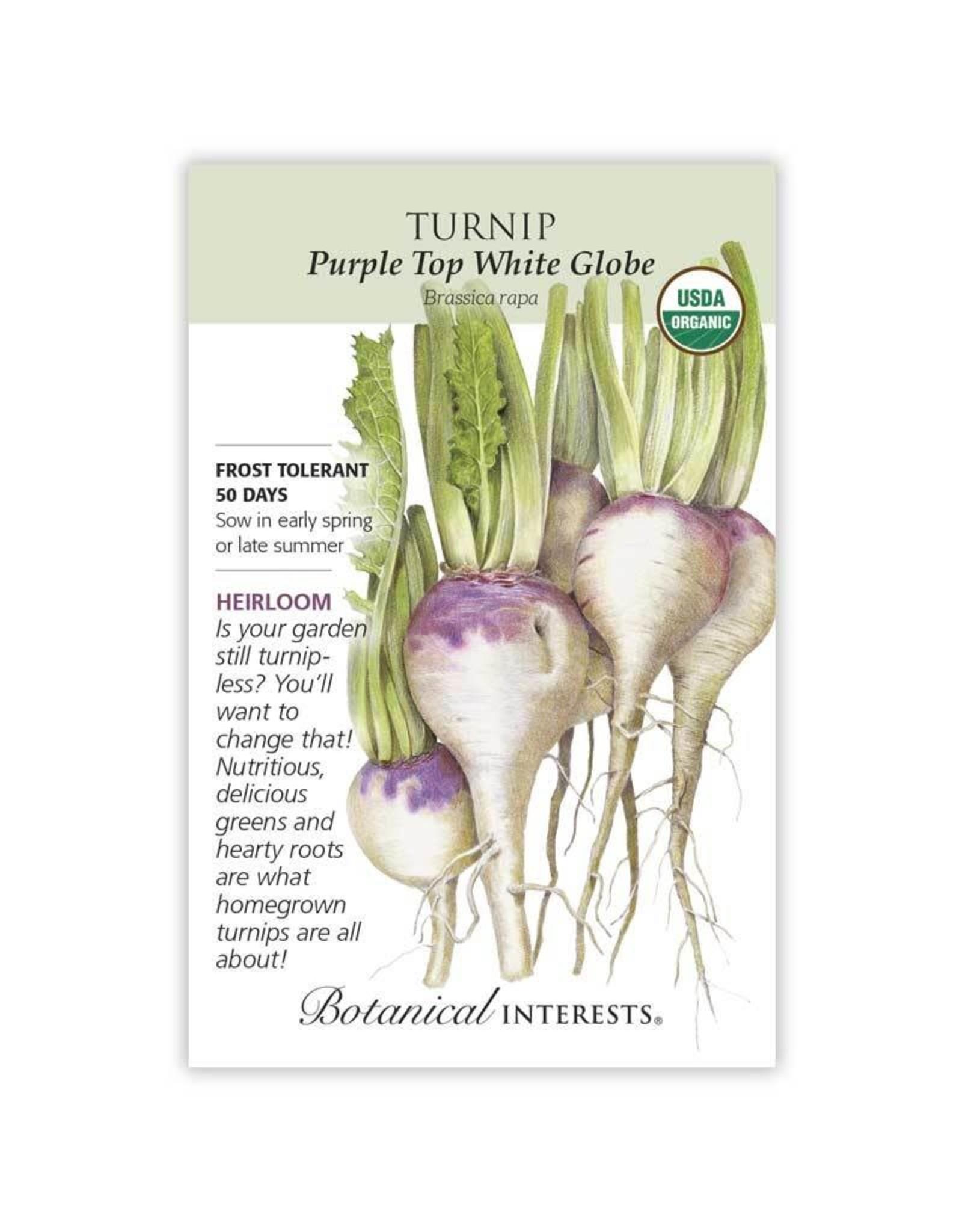 Seeds - Turnip Purple Top White Globe Org