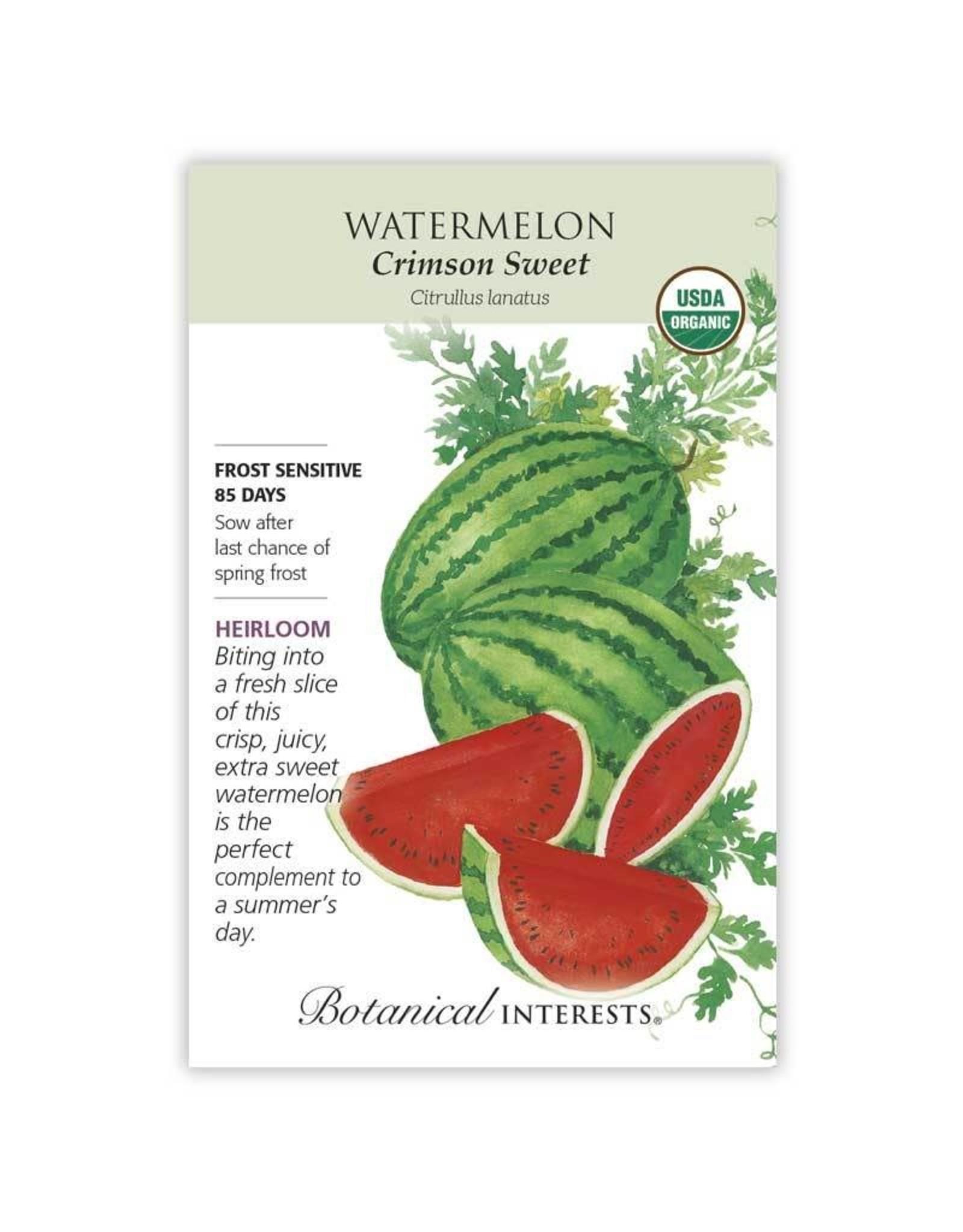 Seeds - Watermelon Crimson Sweet Organic