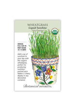 Seeds - Wheatgrass Organic, Large