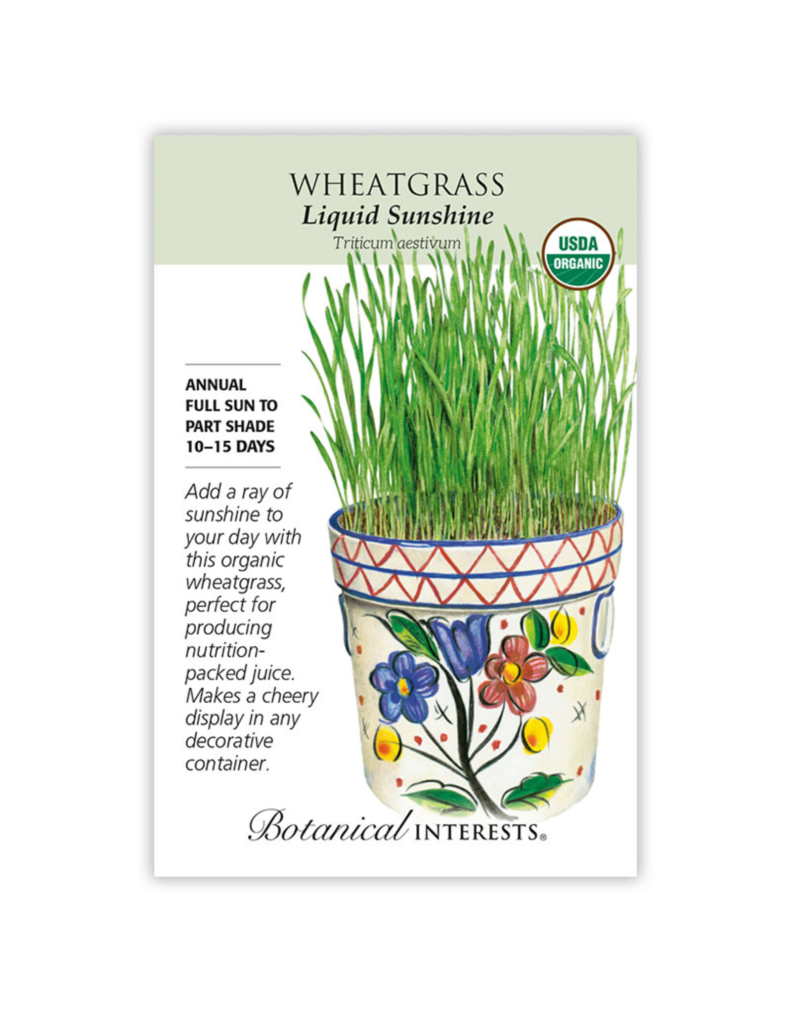 Seeds - Wheatgrass Org, Large