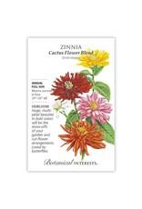 Seeds - Zinnia Cactus Flower Blend