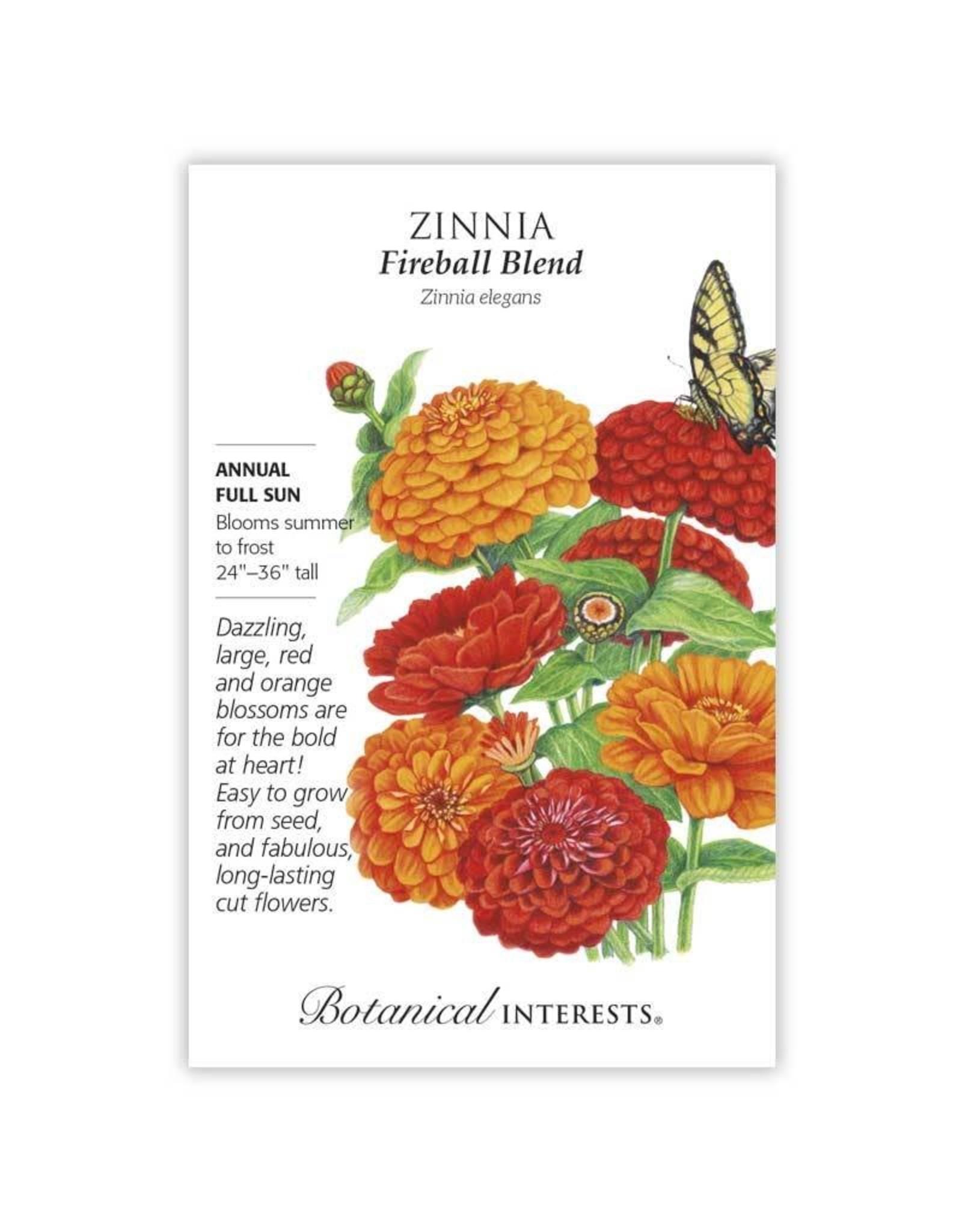 Seeds - Zinnia Fireball Blend