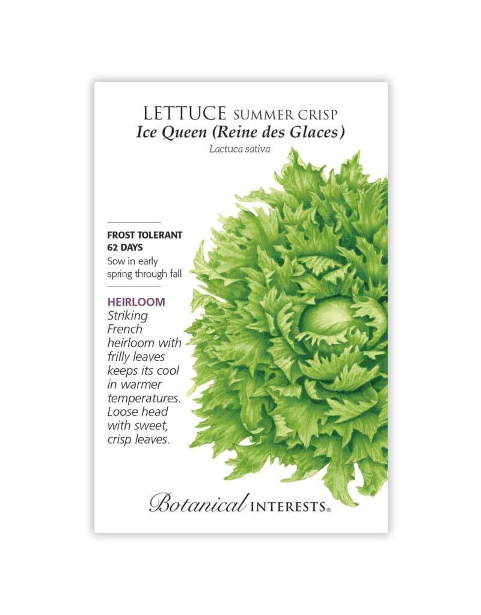 Seeds - Lettuce Summer Crisp Ice Queen