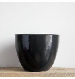 Egg Planter - Black