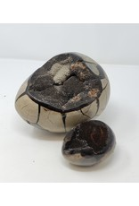 Mini Septarian Dragon Egg