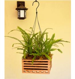 "8"" Hanging Wooden Orchid Basket"