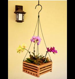 "10"" Hanging Wooden Orchid Basket"