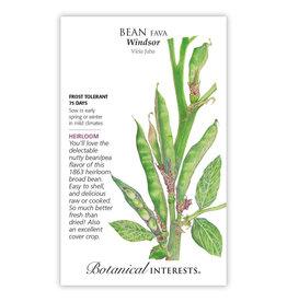 Seeds - Bean Broad Fava Windsor, Large