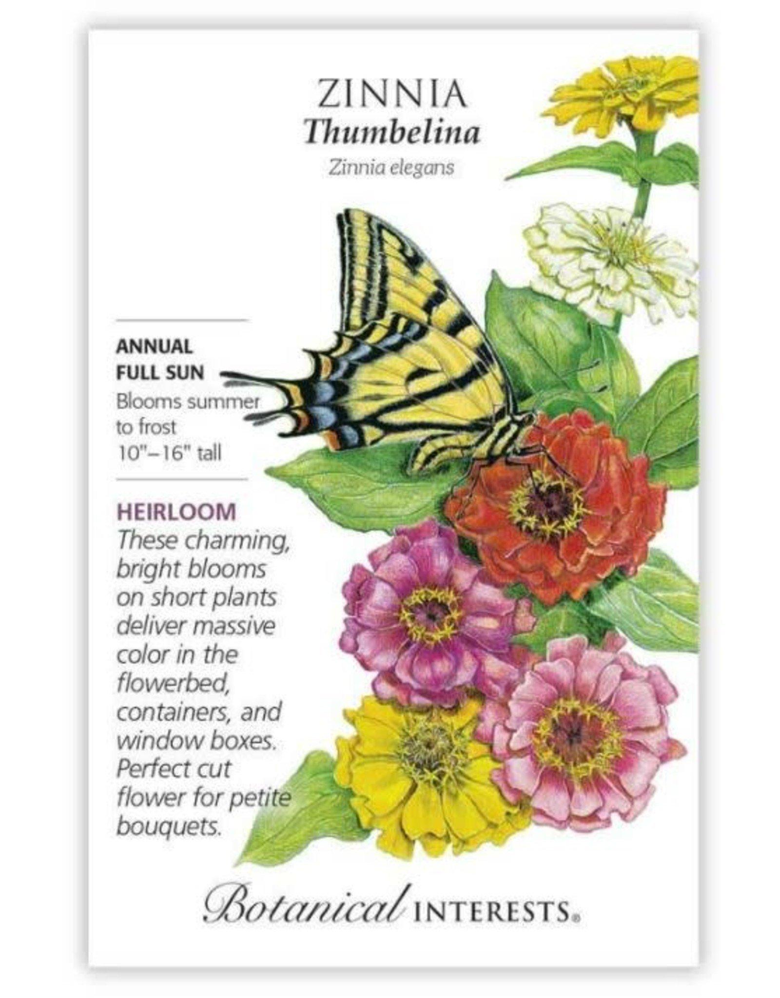 Seeds - Zinnia Thumbelina Org