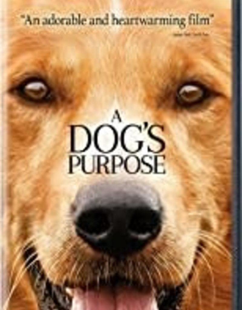 Used DVD A Dog's Purpose