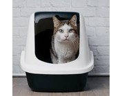 Litter Box & Accessories