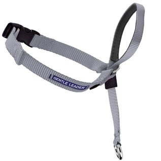 PetSafe PetSafe Gentle Leader Petite Silver