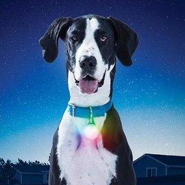 Nite Ize Nite Ize SpotLit Disco Collar Light