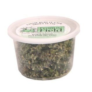 From the Field From The Field Cat Buds in a Tub 0.5oz