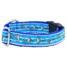 2Hounds 2Hounds Nauti Dog Collar LG