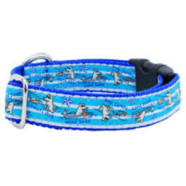 2Hounds 2Hounds Nauti Dog Collar MD