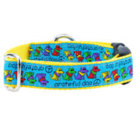 2Hounds Grateful Dog Collar Medium